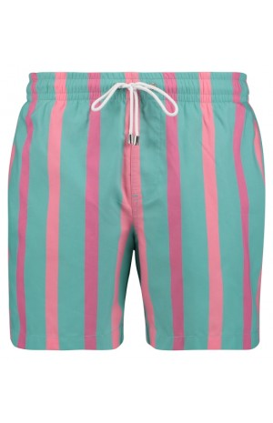 TURQUOISE, SALMON AND PURPLE STRIPED SWIM SHORTS