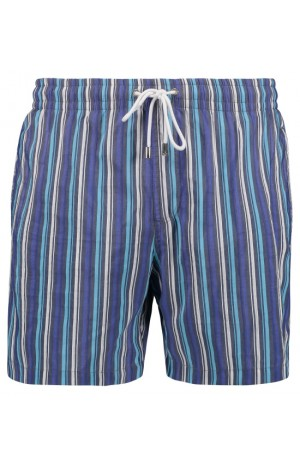 BLUE STRIPES SWIM SHORTS